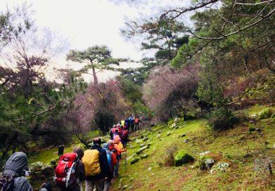 DEDAK'la Bir Yürüyüşün Öyküsü